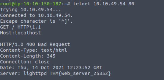 TryHackMe Net Sec Challenge Writeup
